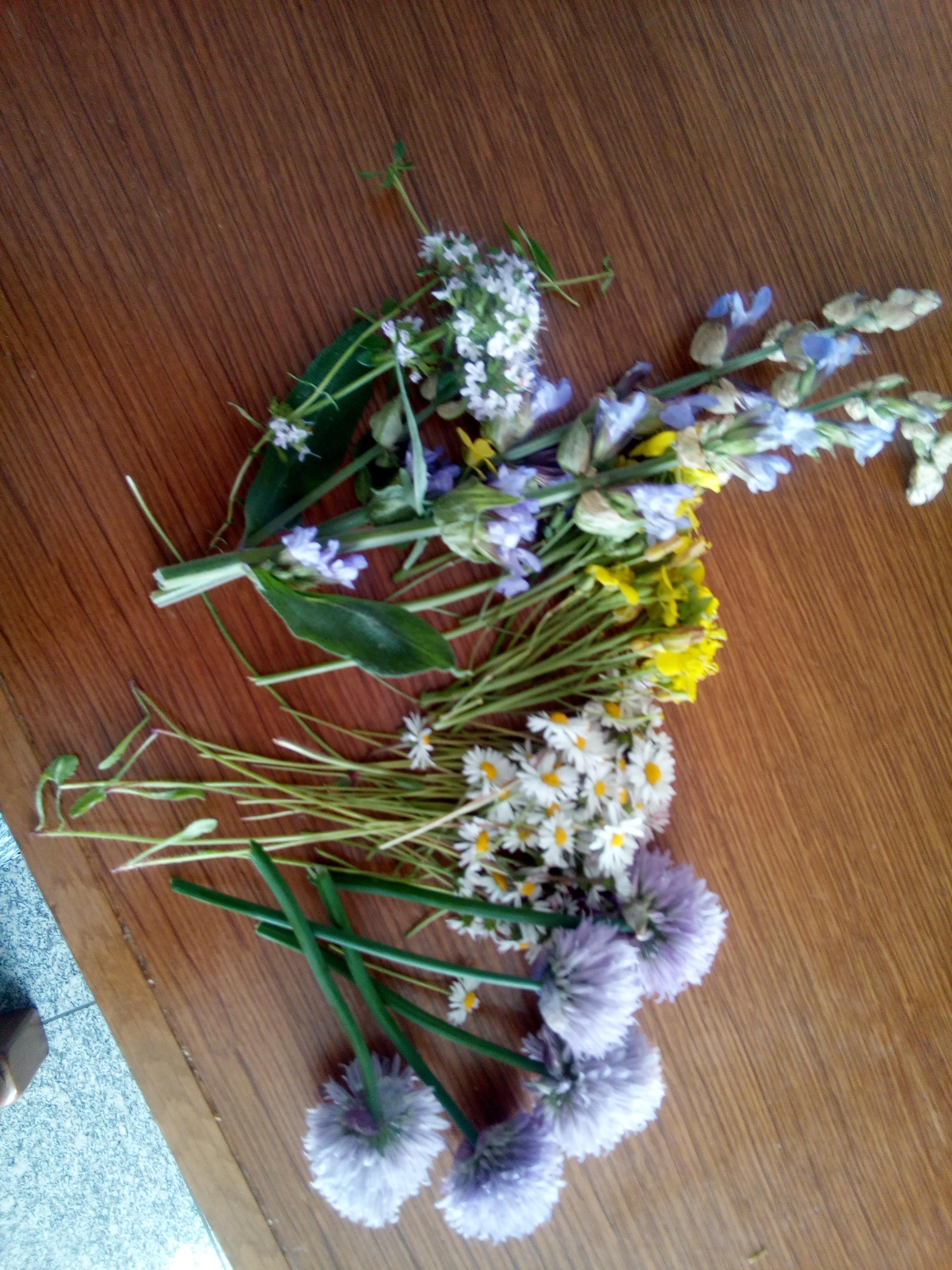 frische Blüten für die Buttter