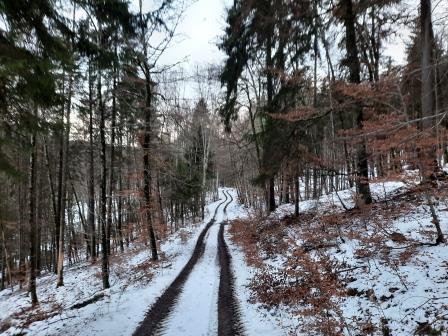 Winterwanderung (1)