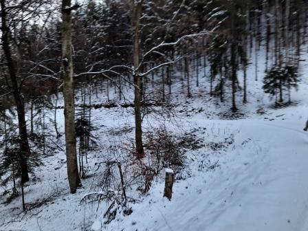 Winterwanderung (2)