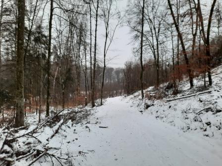 Winterwanderung (3)
