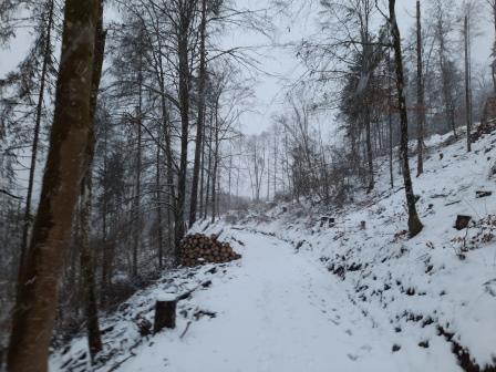Winterwanderung (4)