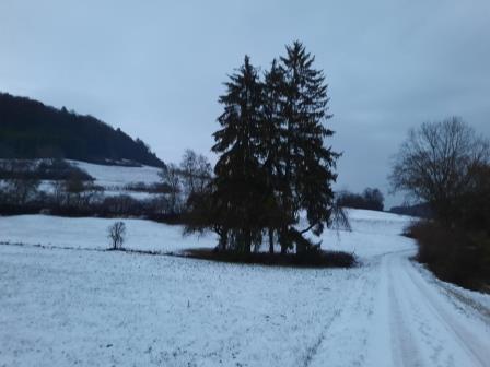 Winterwanderung (8)
